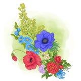 Composición con las flores del verano: amapola, narciso, anémona, viole Foto de archivo libre de regalías