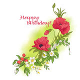 Composición con las flores del verano: amapola, narciso, anémona, viole Imagenes de archivo