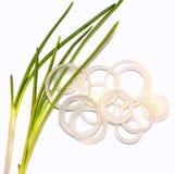 Composición con los anillos de cebolla Fotografía de archivo
