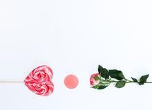 Composición con los cosméticos y las flores del maquillaje en el fondo blanco Foto de archivo