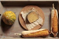 Composición con queso Imagen de archivo libre de regalías