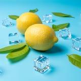Composición creativa del verano con los cubos del limón y de hielo en fondo azul Concepto mínimo de la bebida imagen de archivo libre de regalías