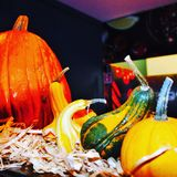 composición de calabazas coloreadas durante el período de Halloween imágenes de archivo libres de regalías