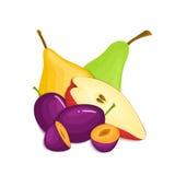 Composición de ciruelos y de peras jugosos El ciruelo maduro de la pera del vector da fruto mirada apetitosa de la rebanada enter Imagen de archivo