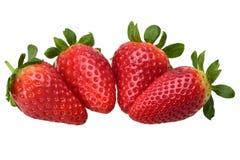 Composición de cuatro fresas frescas maduras deliciosas fotos de archivo libres de regalías