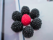Composición de dulces Imagen de archivo