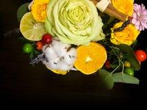 Composición de flores y de frutas Ramo en un fondo oscuro Imagenes de archivo