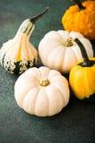 Composición de la acción de gracias del otoño Imagenes de archivo