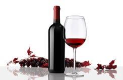 Composición de la botella y del vidrio de vino con el manojo de uvas Imagen de archivo
