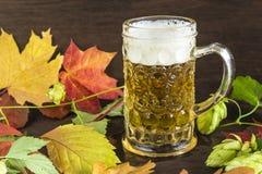 Composición de la cerveza: la taza de cerveza, colorfull se va, salto en un fondo de madera oscuro Imagen de archivo libre de regalías