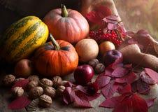 Composición de la decoración del diseño de la comida del otoño con Foto de archivo