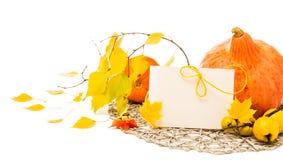 Composición de la esquina del otoño con la tarjeta de felicitación, espacio del texto Imagenes de archivo
