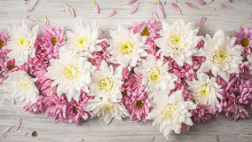 Composición de la flor blanca y rosada en la opinión de sobremesa de madera blanca Fotografía de archivo