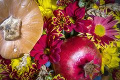 Composición de la flor con una granada y una calabaza Imágenes de archivo libres de regalías