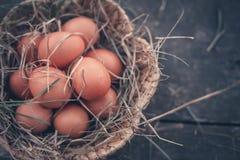 Composición de la foto de los huevos de Pascua Imagen de archivo