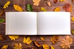 Composición de la hoja del otoño, álbum de foto Tiro del estudio, parte posterior de madera Foto de archivo