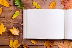 Composición de la hoja del otoño, álbum de foto Tiro del estudio, parte posterior de madera Imágenes de archivo libres de regalías