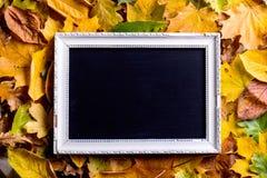 Composición de la hoja del otoño con el marco Copie el espacio Fotos de archivo libres de regalías