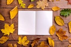 Composición de la hoja del otoño, cuaderno Tiro del estudio, parte posterior de madera Foto de archivo libre de regalías