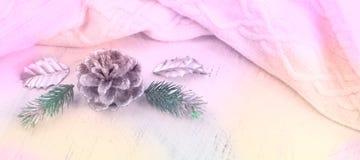 Composición de la Navidad de la bandera con los elementos decorativos Fotos de archivo