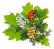 Composición de la Navidad con el ilex, el abeto y las bayas Imagen de archivo libre de regalías
