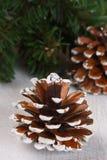 Composición de la Navidad con los conos Fotos de archivo libres de regalías