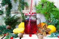 Composición de la Navidad con una taza, ramas coníferas y naranjas imagen de archivo