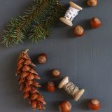 Composición de la Navidad conos Ramas del abeto Fotos de archivo libres de regalías