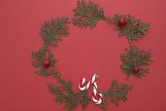 Composición de la Navidad hecha de las ramitas del thuja y de los bastones de caramelo verdes en fondo rojo Visión superior, ende Fotografía de archivo