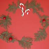 Composición de la Navidad hecha de las ramitas del thuja y de los bastones de caramelo verdes en fondo rojo Visión superior, ende Imagen de archivo libre de regalías