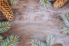 Composición de la Navidad: Ramas frescas de la picea azul con los conos en fondo de madera envejecido Visión superior imagenes de archivo
