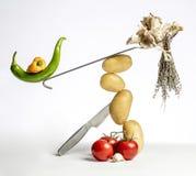 Composición de los alimentos gastrónomo con las verduras y los utensilios de la cocina Imágenes de archivo libres de regalías
