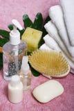 Composición de los items del cuarto de baño foto de archivo libre de regalías