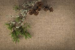 Composición de materiales naturales en el fondo de lino imágenes de archivo libres de regalías