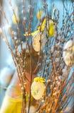 Composición de Pascua con los huevos que cuelgan en ramo del gatito-sauce y conejo del juguete en el fondo azul fotografía de archivo