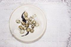 Composición de pascua de la primavera con los huevos imagen de archivo