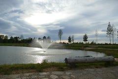 Composición de Reed Natural del cielo de Forest Lake Evening imágenes de archivo libres de regalías