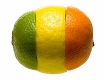 Composición de tres piezas de las frutas cítricas Fotografía de archivo libre de regalías