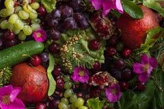 Composición de verduras y de la fruta imagenes de archivo