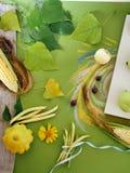 Composición decorativa de las verduras, frutas, hojas en lona, tejas blancas fotografía de archivo libre de regalías