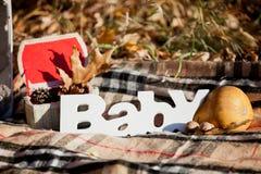 Composición decorativa del otoño con el ` del bebé del ` de la palabra Imagenes de archivo