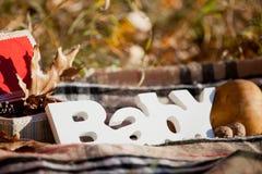 Composición decorativa del otoño con el ` del bebé del ` de la palabra Foto de archivo libre de regalías