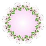 Composición decorativa - flores de la madreselva Foto de archivo