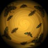 Composición decorativa - las polillas son atraídas por las luces Fotos de archivo