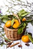 Composición del Año Nuevo con las mandarinas Foto de archivo libre de regalías