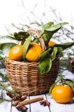 Composición del Año Nuevo con las mandarinas Fotos de archivo libres de regalías