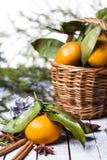 Composición del Año Nuevo con las mandarinas Imagenes de archivo