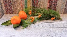 Composición del Año Nuevo con las mandarinas, la rama del arborvitae, las velas y los árboles de navidad Imagenes de archivo