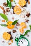 Composición del Año Nuevo de la Navidad con el mandarín y las galletas de la mandarina Fotografía de archivo