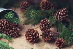 Composición del bosque con los conos del pino y rama de árbol de abeto en la tabla de madera rústica Tarjeta de Navidad Fotos de archivo libres de regalías